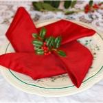 Tovaglioli Stella Di Natale.Come Piegare I Tovaglioli Per Decorare La Tavola Di Natale Don Saro